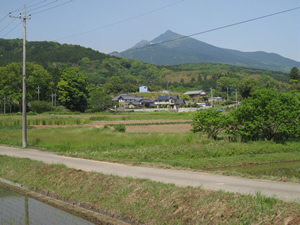 画像:里山風景06
