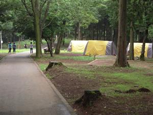 画像:龍神の森キャンプ場02