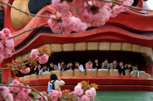 『H25フラワーパーク部門市長賞「八重の桜の前で」』の画像