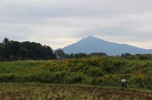 『H25筑波山・霞ヶ浦部門観光協会長賞「ふる里の下」』の画像