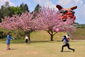 『H26入選 春の佳き日 植竹みとり』の画像