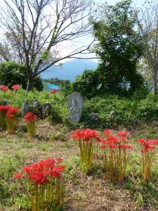 『H26入選 野仏に詣でる(彼岸花) 櫻井忠男』の画像
