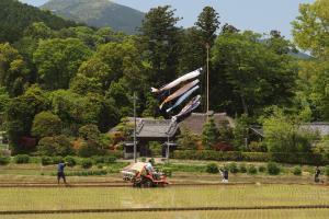 『入選 『郷の春』 齊藤一郎』の画像
