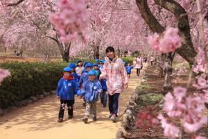 『入選 『麗らかな春』 竹内誠』の画像