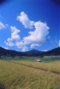 『佳作 『郷の秋雲』 滝田茂』の画像