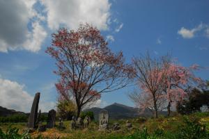 『H2812入賞『村はずれ』小林優』の画像