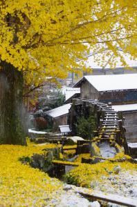 『H2814入賞『晩秋の雪景色』櫻井重夫』の画像