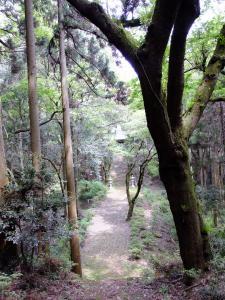 『H2826入賞『薬師古道』山口定夫-縦』の画像
