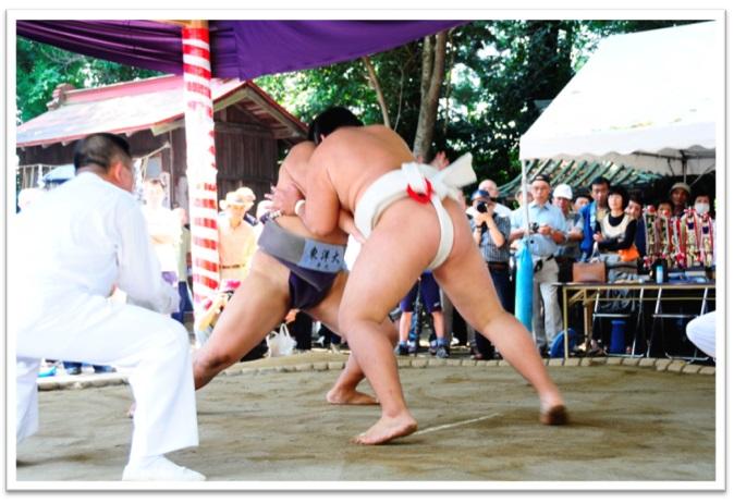 『みどころ 奉納相撲』の画像