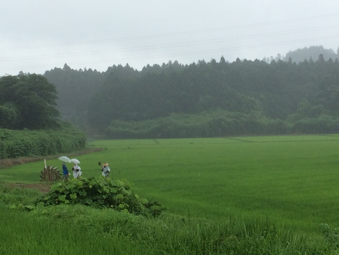 『撮影風景5』の画像