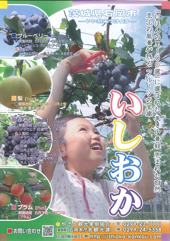『R1果樹チラシ夏(表)』の画像